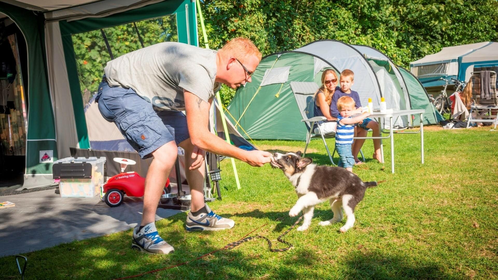 Man met hond en gezin bij tent op Vakantiepark De Krim VVV Texel