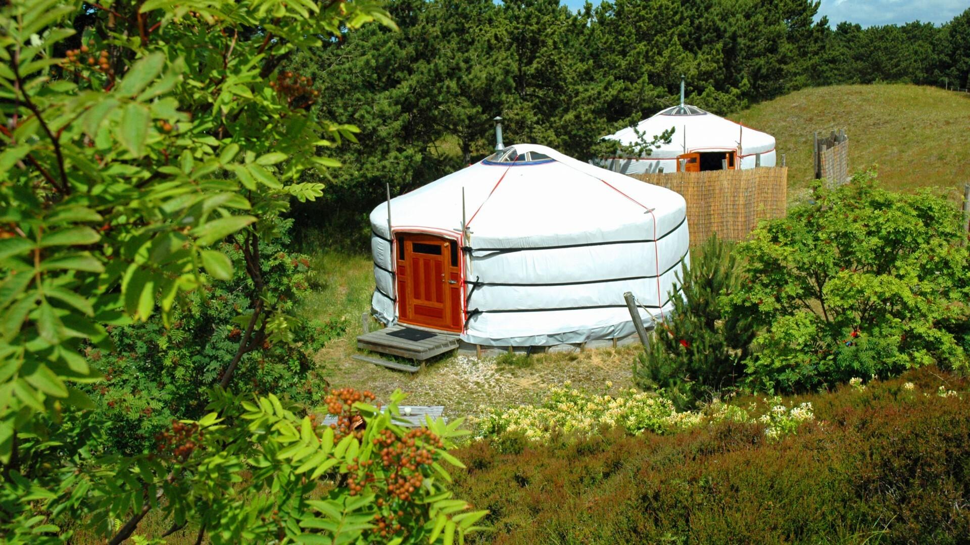 Yurt in de duinen Den Hoorn VVV Texel