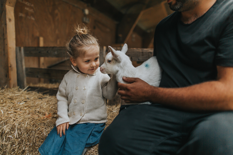 Meisje met geitje bij Schapenboerderij Texel VVV Texel