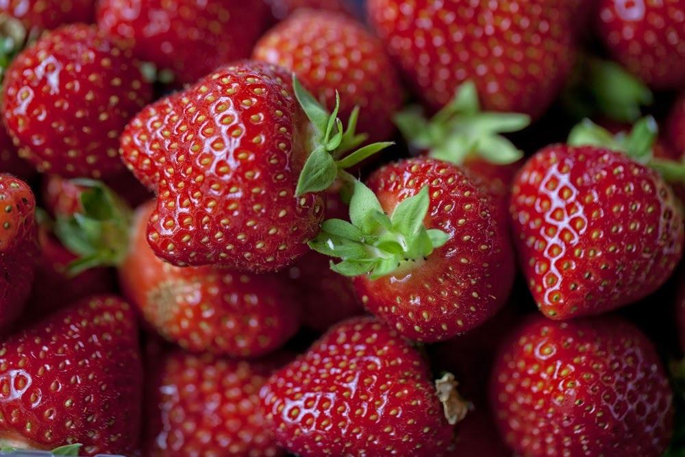 Texelse aardbeien VVV Texel Fotograaf Annette van Ruitenburg 2