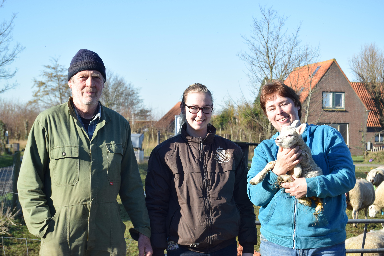 Familie Hin schapenboerderij in Den Burg VVV Texel
