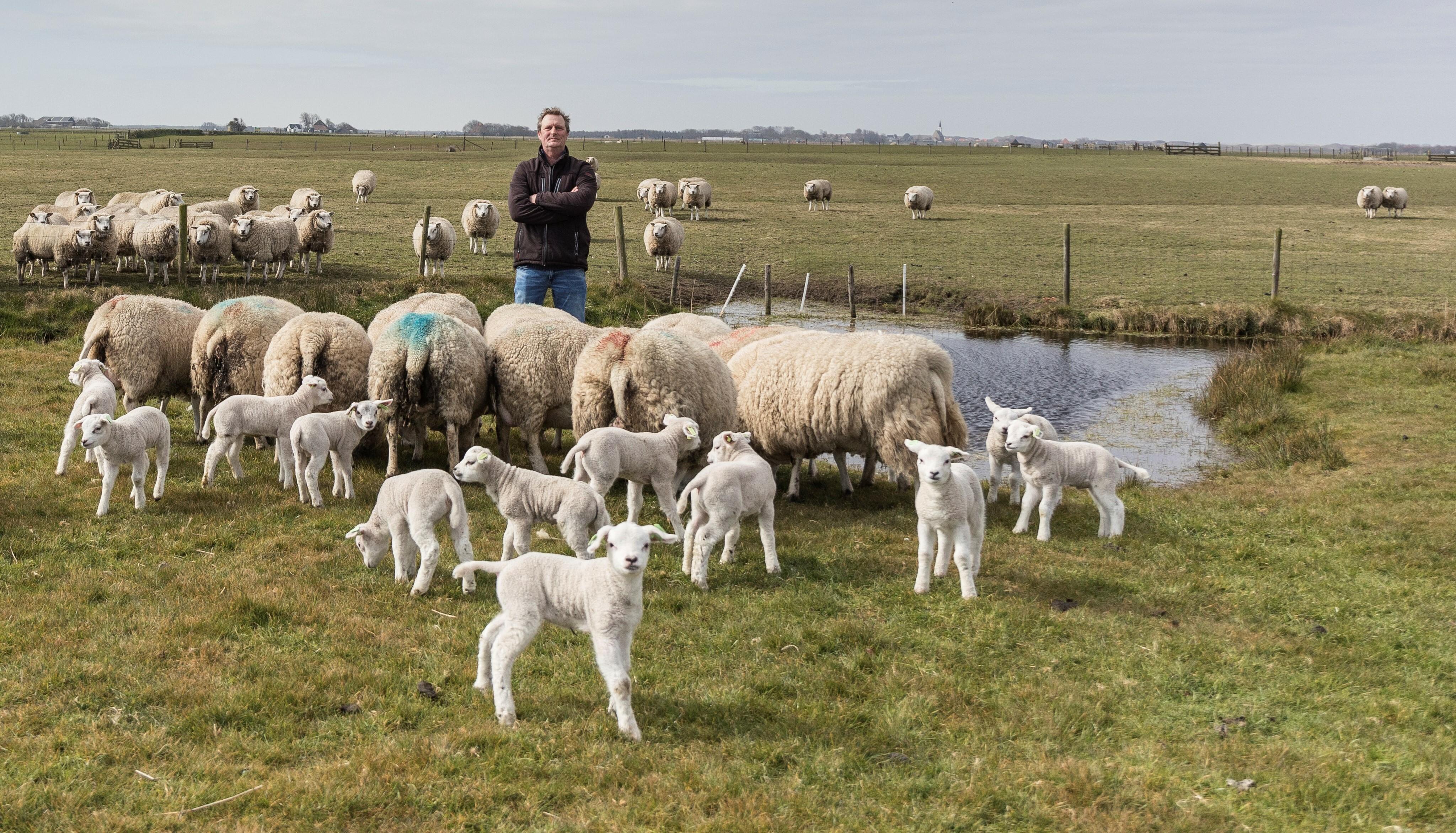 Schapenboer Arjen Boerhorst van boerderij de Hoge Kamp VVV Texel